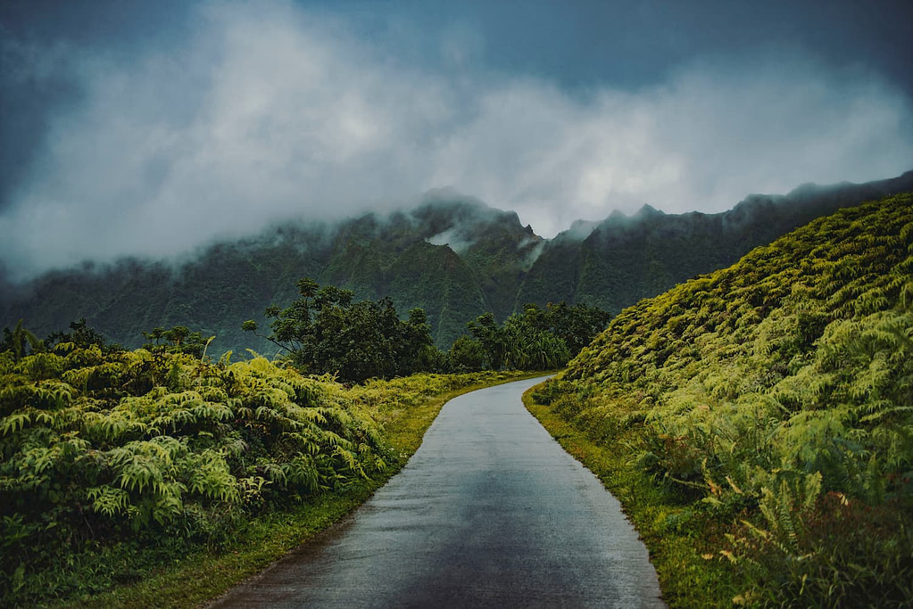 Best places to visit in monsoon in India.